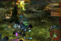 gw2-wurm-barf-triple-trouble-achievement-guide