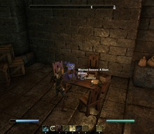 eso-lorebooks-dungeon-lore-wayrest-sewers-a-short-history