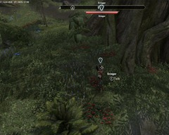 eso-bosmer-insight-grahtwood-quest-guide-2