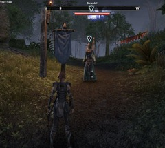 eso-carnival-conundrum-grahtwood-quest-guide