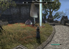 eso-deshaan-skyshards-guide-a-hlaalu-victory-in-narsis