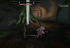 eso-deshaan-skyshards-guide-where-a-lady-seeks-kwama-before-the-storm-3