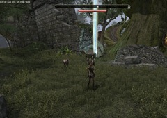 eso-greenshade-skyshards-guide-find-an-eclectic-outskirt-by-the-sea-2