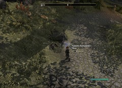 eso-lorebooks-legends-of-nirn-tamrielic-artifacts-part-three-aldmeri
