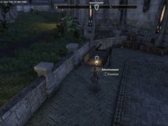 eso-rare-imports-grahtwood-quest-guide-2