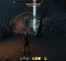eso-stormhaven-skyshards-comb-the-abbey's-catacombs-3