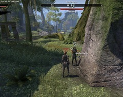 eso-the-grip-of-madness-grahtwood-quest-guide-2