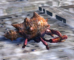 gw2-mini-freshwater-crab-set-3-minis-2