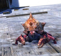 gw2-mini-freshwater-crab-set-3-minis