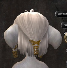 gw2-new-hairstyles-asura-female-1-3