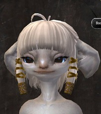gw2-new-hairstyles-asura-female-1