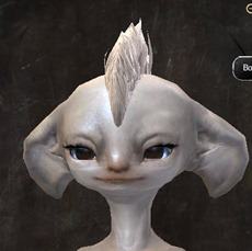 gw2-new-hairstyles-asura-female-2-1