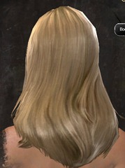 gw2-new-hairstyles-human-female-1-3