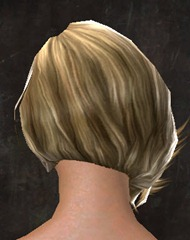 gw2-new-hairstyles-human-female-2-3