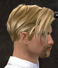 gw2-new-hairstyles-human-male-1-2