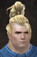 gw2-new-hairstyles-norn-male-1