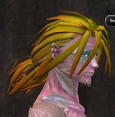 gw2-new-hairstyles-sylvari-male-1-2