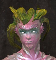 gw2-new-hairstyles-sylvari-male-2-1
