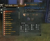 gw2-pvp-build-UI-3