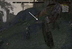 eso-shadowfen-ce-treasure-map-location-3
