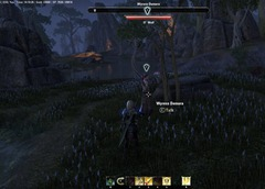 eso-the-will-of-the-woods-bangkorai-quest-guide
