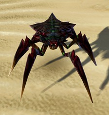 swtor-bloodhusk-lylek-pet