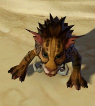 swtor-desert-nekarr-cat-pet