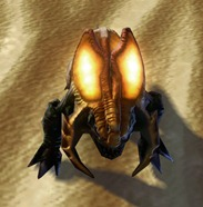 swtor-goldplate-mewvorr-pet-2
