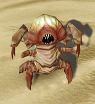 swtor-killik-assasin-larva-pet