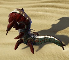swtor-killik-queen-larva-pet-2