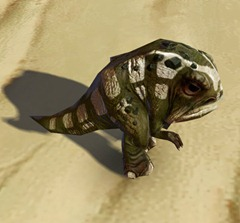 swtor-mottled-blurrg-pet-2