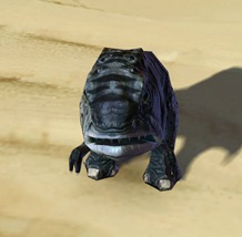 swtor-umbral-blurrg-pet