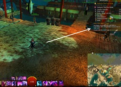 gw2--festival-of-four-winds-achievement-guide-7
