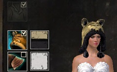 gw2-fuzzy-cat-hat-gemstore-5