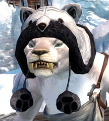 gw2-fuzzy-cat-hat-gemstore-6