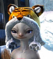 gw2-fuzzy-cat-hat-gemstore-9