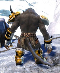 gw2-lawless-armor-set-4pc-charr-3