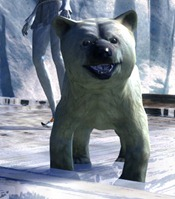 gw2-mini-polar-bear-cub-3