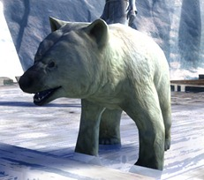 gw2-mini-polar-bear-cub-4