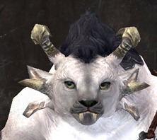 gw2-new-faces-festival-of-four-winds-charr-female-1