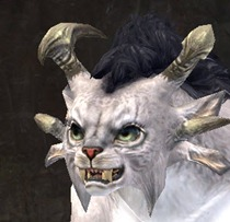 gw2-new-faces-festival-of-four-winds-charr-female-2