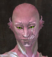 gw2-new-faces-festival-of-four-winds-sylvari-male-1