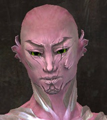 gw2-new-faces-festival-of-four-winds-sylvari-male-2