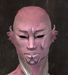 gw2-new-faces-festival-of-four-winds-sylvari-male-3