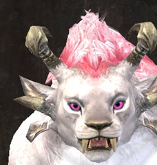 gw2-cotton-candy-eye-color-3