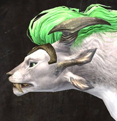 gw2-dark-lime-hair-color-3