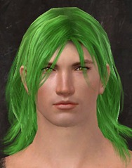 gw2-dark-lime-hair-color-6