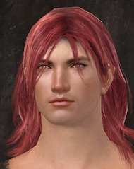 gw2-dark-peach-hair-color-6