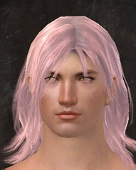 gw2-light-peach-hair-color-6