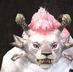 gw2-peach-eye-color-3
